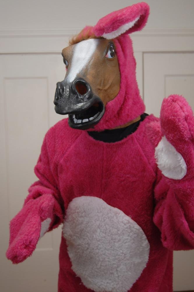 Розовый Конь - Маска Коня - Разное - Фотоальбомы - Маска Коня